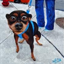 dog-sidewalk_joelleburnette2015_x500