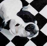 """""""Checker Dog""""Acrylic on Canvas12″H x 12″W"""
