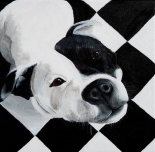 """Checker Dog""Acrylic on Canvas12″H x 12″W"